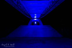 feeling-blue-under-the-bridge-down-by-the-river-angelkwill