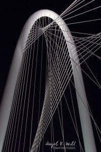margaret-hunt-hill-bridge-arch-dallas-angelkwill