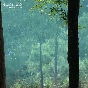 impressionistic-landscape-photography-angelkwill