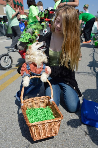 St-Paddys-Pickle-Parade-Mansfield-angelkwill-02
